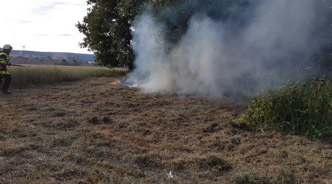 Brand einer Freifläche am 23.06.17